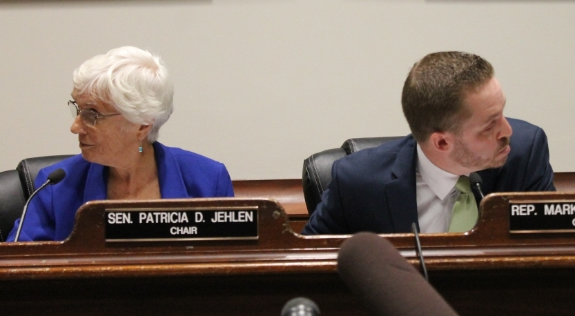 Sen. Pat Jehlen and Rep. Mark Cusack, co-chairs of