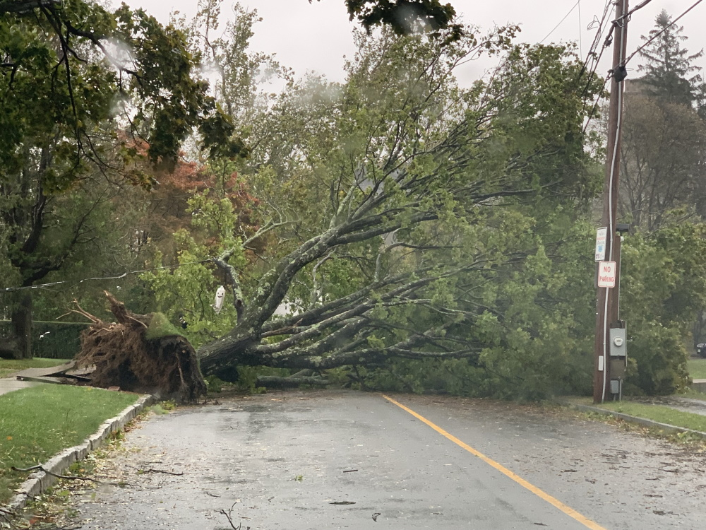 A tree uprooted by high winds overnight Tuesday left Highland Avenue near downtown Cohasset impassable on Wednesday afternoon. [Michael P. Norton/SHNS]